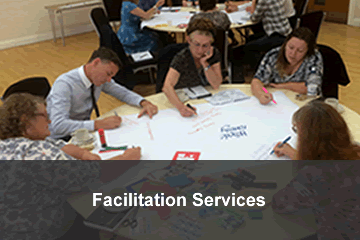 Facilitation services